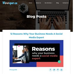 12 Reasons Why Your Business Needs A Social Media Expert