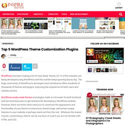 Top 5 Wordpress Theme Customization Plugins