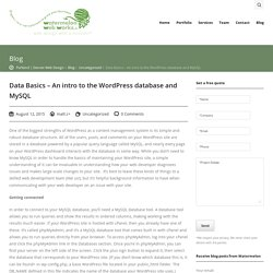 Data Basics - An intro to the WordPress database and MySQL - Watermelon Web Works LLC