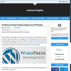 WordPress Developer Sydney: Balance your WP Plugins - Digital enCloud