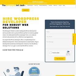 Hire Wordpress Developers in 2020 - 100% Plugin Solutions