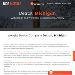Affordable web design michigan