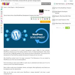 Tips on How to Hire a Good WordPress Development Company from India
