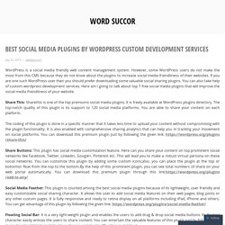 Social Media Plugins Created with WordPress Custom Development Services