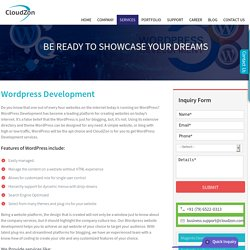 Wordpress Website, Wordpress plugin, Wordpress CMS - Development