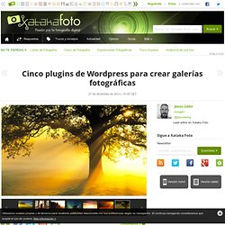 Cinco plugins de Wordpress para crear galerías fotográficas