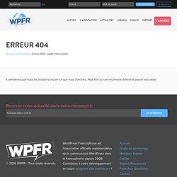 Il ne faut jamais chercher un thème WordPress gratuit sur un moteur de recherche