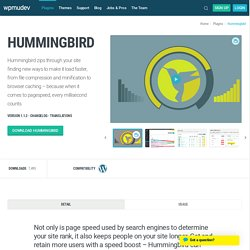 WordPress Hummingbird Plugin