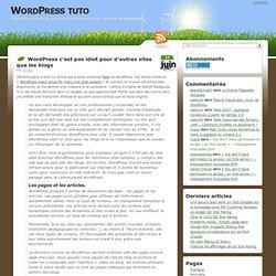 WordPress c'est pas idiot pour d'autres sites que les blogs
