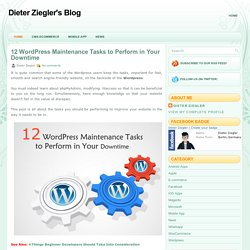 12 WordPress Maintenance Tasks to Perform in Your Downtime ~ Dieter Ziegler's Blog