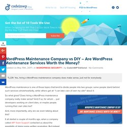 WordPress Maintenance Company vs DIY - Are WordPress Maintenance Services Worth the Money?