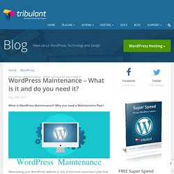 WordPress Maintenance - What is it and do you need it?