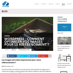 2.2 WordPress : comment optimiser vos images ?