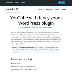 Youtube with fancy zoom | Gopi's Wordpress Plug-in