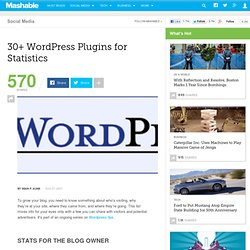 30+ WordPress Plugins for Statistics