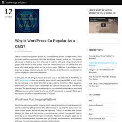 Why is Wordpress The Most Chosen CMS By Webmasters?