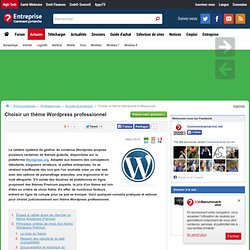 Choisir un thème Wordpress professionnel - CommentCaMarche