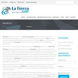 wordpress thun - Custom website