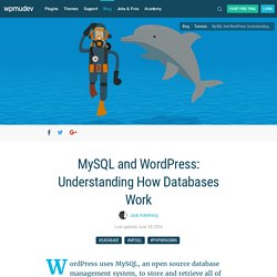 MySQL and WordPress: Understanding How Databases Work