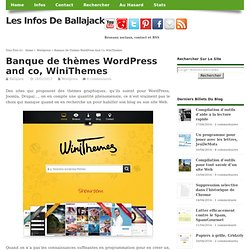 Banque de thèmes WordPress and co, WiniThemes