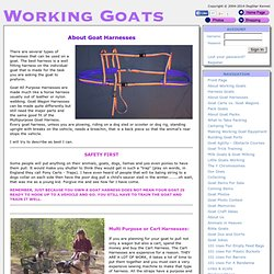 Working Goats - About Goat Harnesses