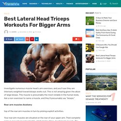 Best Lateral Head Triceps Workouts For Bigger Arms