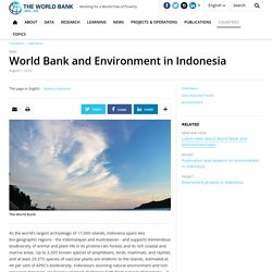 World Bank and Environment in Indonesia