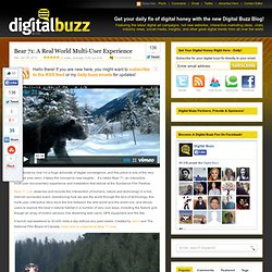 Bear 71: A Real World Multi-User Experience
