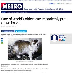 One of world's oldest cats mistakenly put down by vet