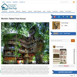 World's Tallest Tree House