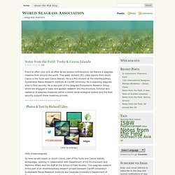 World Seagrass Association