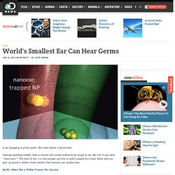 World's Smallest Ear Can Hear Germs
