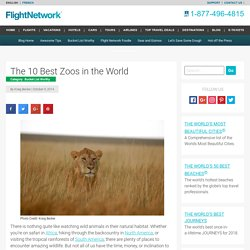 The 10 Best Zoos in the World - Travel Blog by FlightNetwork