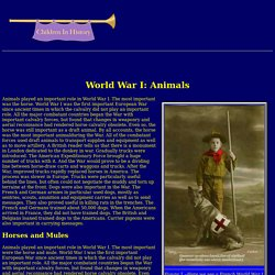 World War I: animals