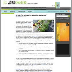 Urban Foraging and Guerrilla Gardening