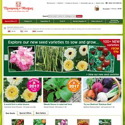 Thompson & Morgan Worldwide Online Gardening Flower and Vegetable Seed Catalogue