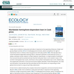 Worldwide hemisphere-dependent lean in Cook pines - Johns - 2017 - Ecology