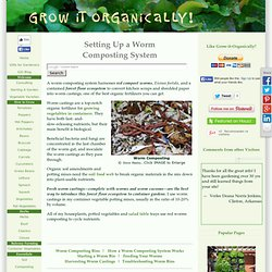 Worm Composting System, Red Worms Composting, Worm Composting Bins