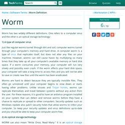 Worm Definition