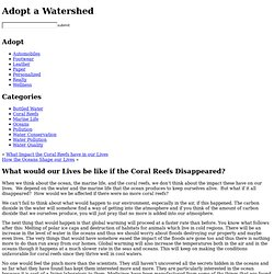 What would our Lives be like if the Coral Reefs Disappeared? « Adopt a Watershed