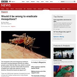 Would it be wrong to eradicate mosquitoes?
