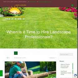 When Would You Hire a Professional Landscaper?