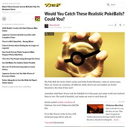Would You Catch These Realistic Pok&Ball? Could You?