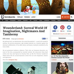 Wounderland: Surreal World Of Imagination, Nightmares And Taxidermy