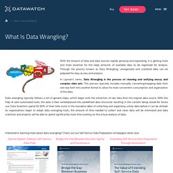 What Is Data Wrangling? - Datawatch Corporation