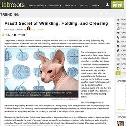Pssst! Secret of Wrinkling, Folding, and CreasingTrending