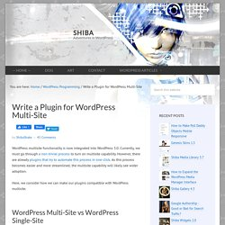 Write a Plugin for WordPress Multi-Site