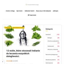 12 roślin, które stosowali Indianie do leczenia wszystkich dolegliwości. - Motywator Dietetyczny