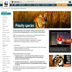 WWF: Priority & endangered species