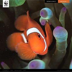 WWF Coral Reef - Barrière de Corail